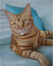Pet Cat , Foto to Painting